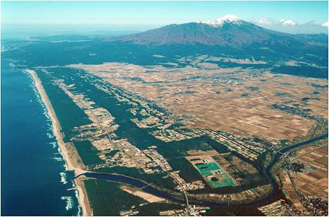 総延長33kmの防砂林(写真提供・山形県庄内総合支庁森林整備課)